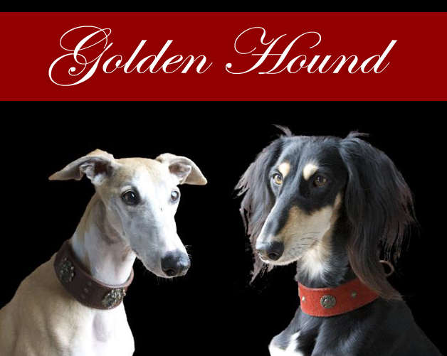 Welcome to Golden Hound